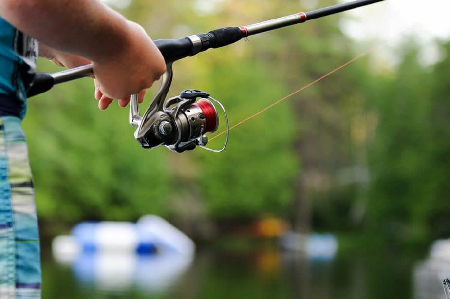 Spool a spinning reel