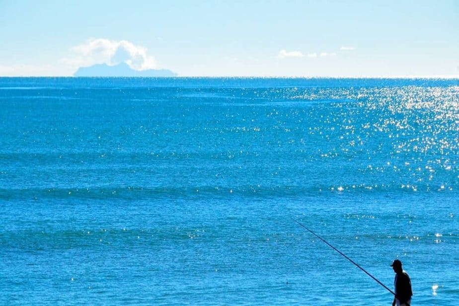 Best Offshore Spinning Rods