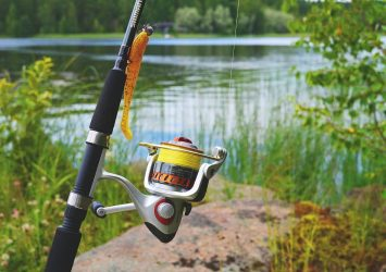 The 5 Best Telescopic (Collapsible) Fishing Rod and Reel Combo of 2021