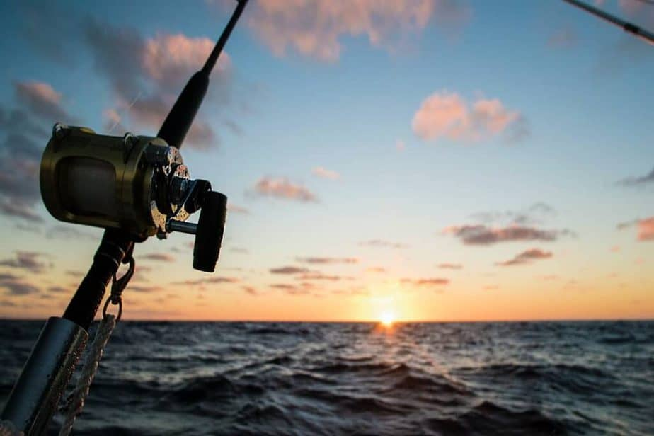 Best Baitcast Reels For Saltwater Fishing