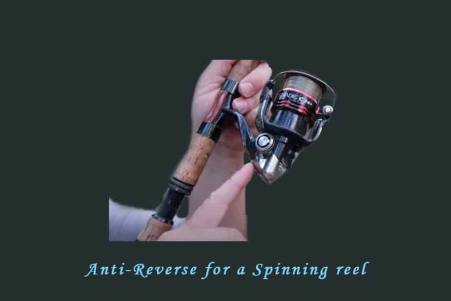 Anti Reverse for on a Spinning Reel