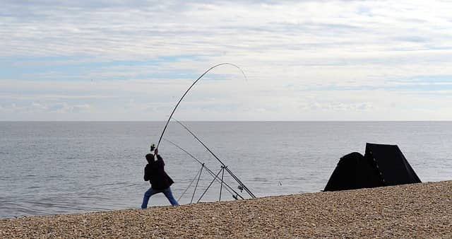 Fishing Rod Action And Power