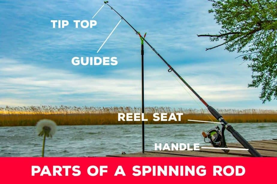 Parts Of A Spinning Rod