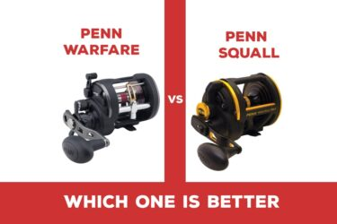 Penn Warfare Vs Squall: Which One is Better