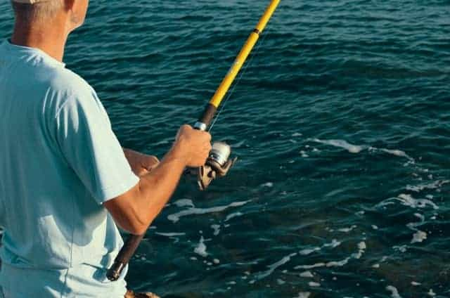 Nice Color Spinning Rod