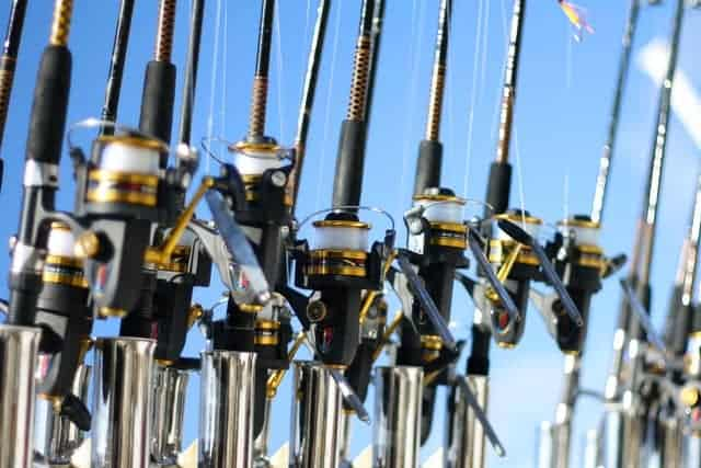 Spinning Rods
